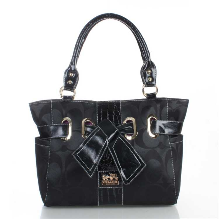 Coach Totes Signature Black