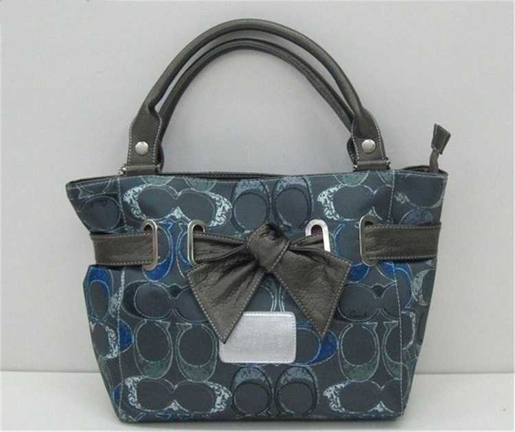 Coach Blue Gray Bag