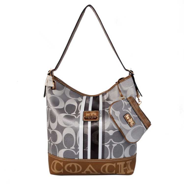 Coach Signature Sliver Hobo Bag