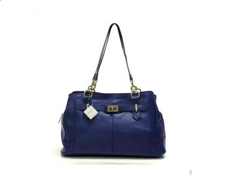 Coach Blue Mini Bag
