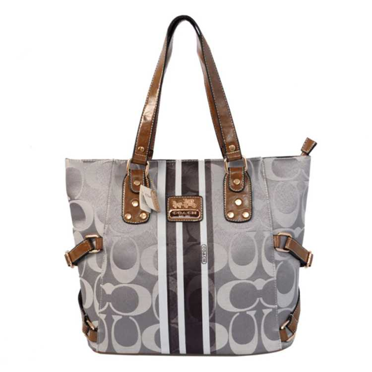Coach Poppy Gray Brown Bag