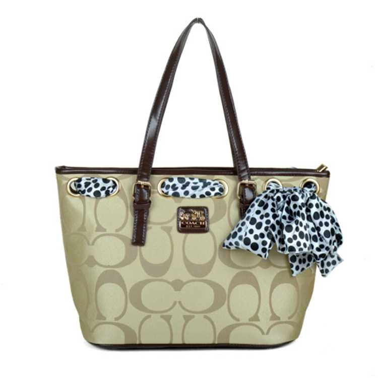 Coach Poppy Brown Apricot Bag
