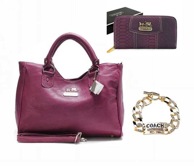 2017 Coach Combination Meals Hot Sale010